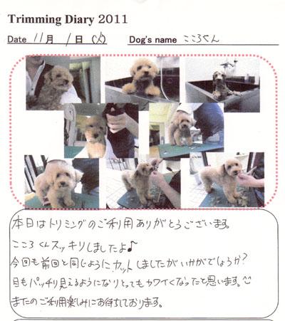 11.11.2-3.jpg